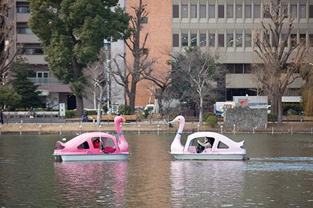 上野恩賜公園ボート場